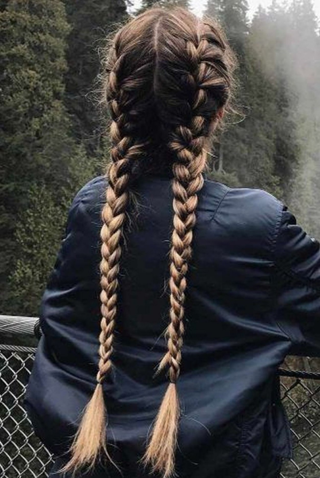 11 French Braids French Braid Hairstyles, Long Hair Styles, Cool 2 Long French Braids