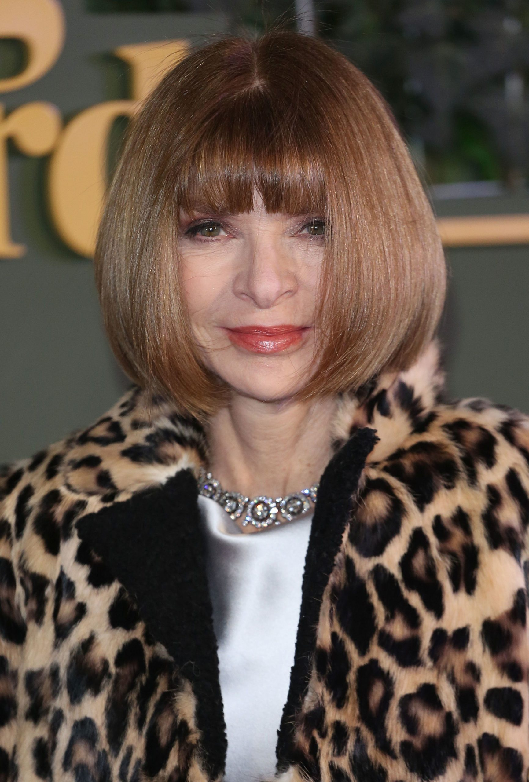 12 Short Hairstyles To Inspire Your Next Chop: Anna Wintour Hair Anna Wintour Haircut