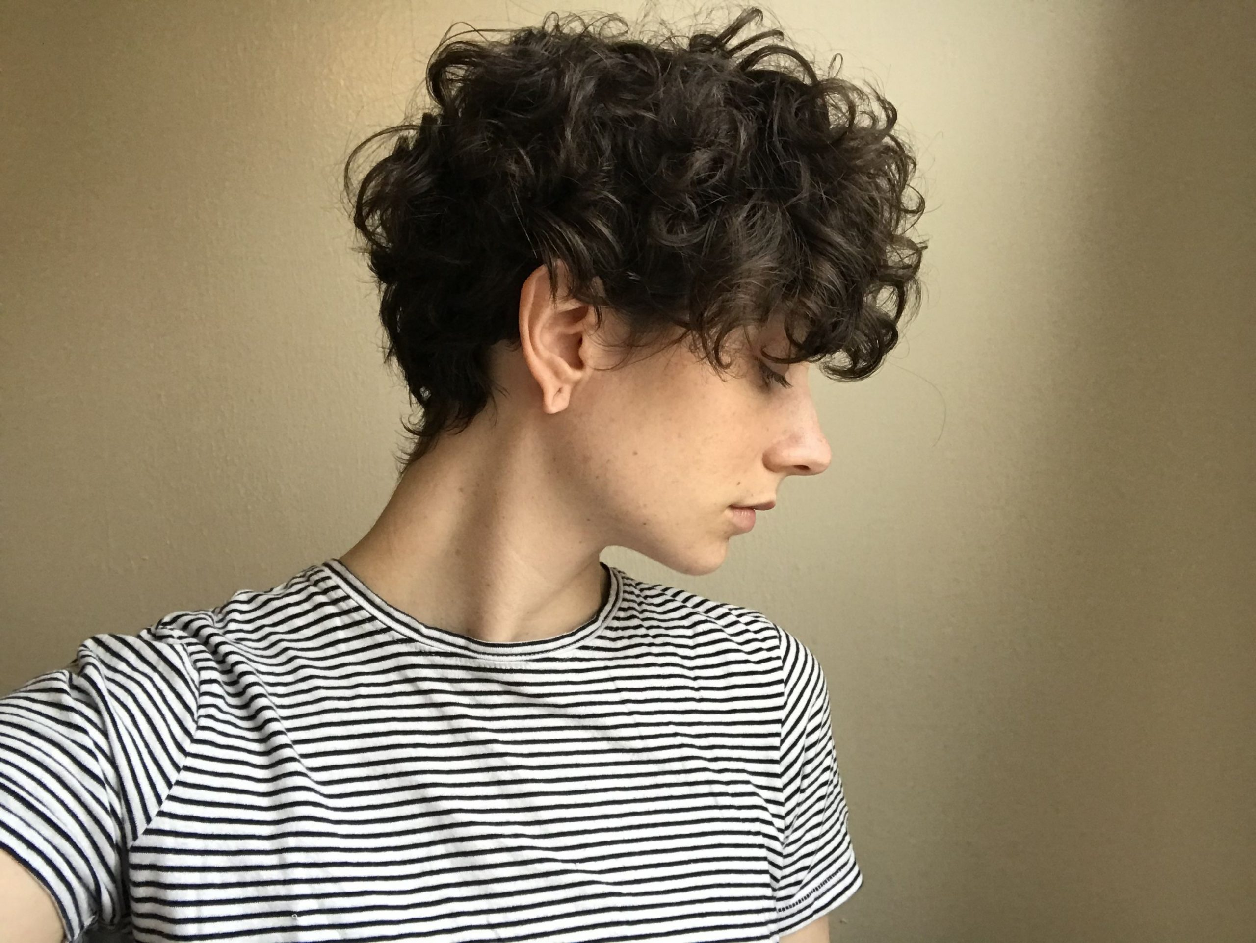 Growing Out Short Curly Hair Curly Hair Styles, Short Curly Hair Short Curly Undercut