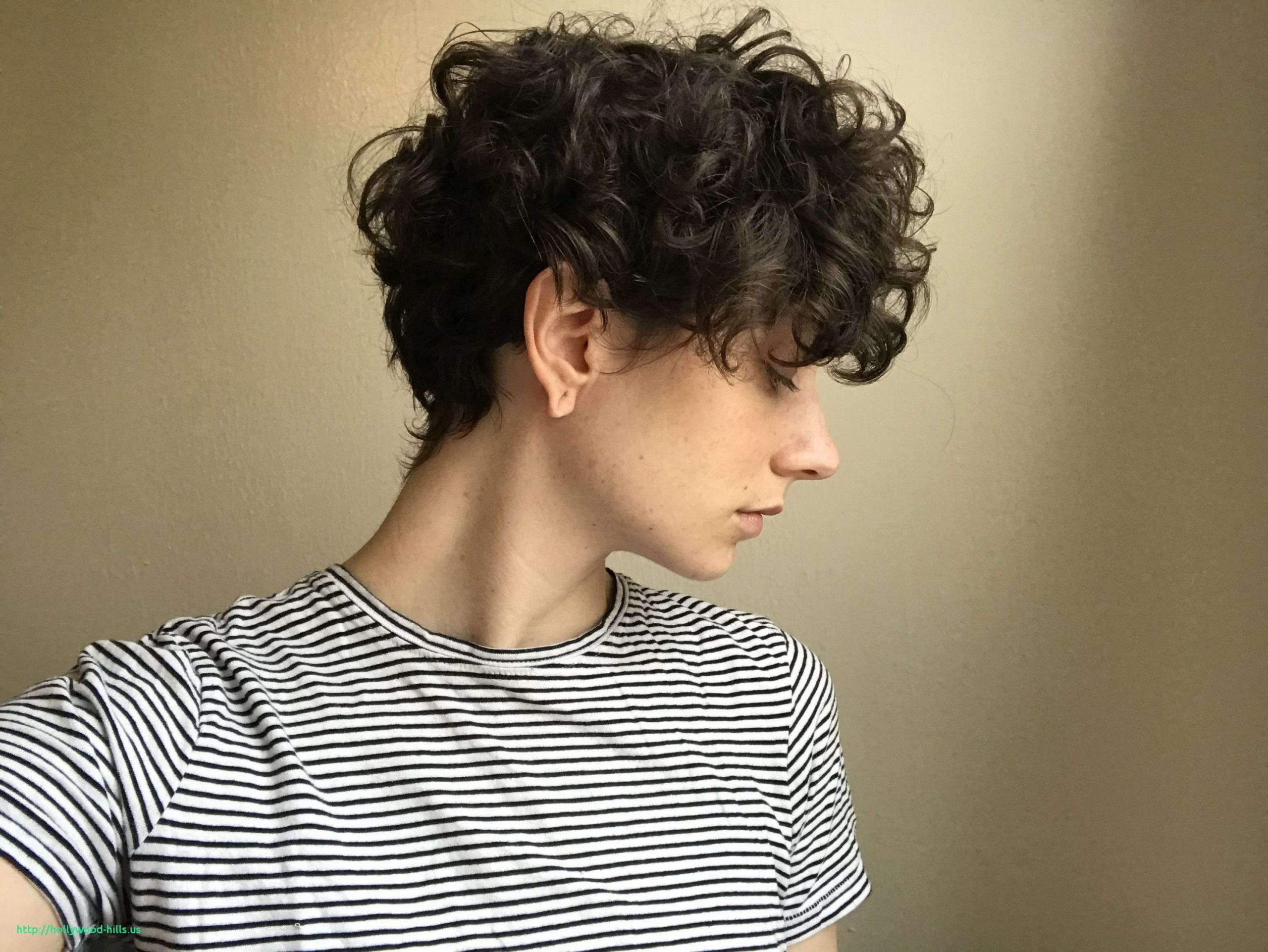 Image result for women's curly undercut  Curly hair styles, Short
