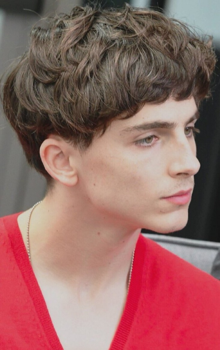 """Musetta Timothée Chalamet Daily Auf Twitter: """"This Is THE Bowl Curly Hair Bowl Cut"""