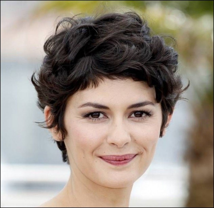 Short Haircuts For Thick Curly Hair And Round Faces Short Hair Haircuts For Frizzy Hair Round Face